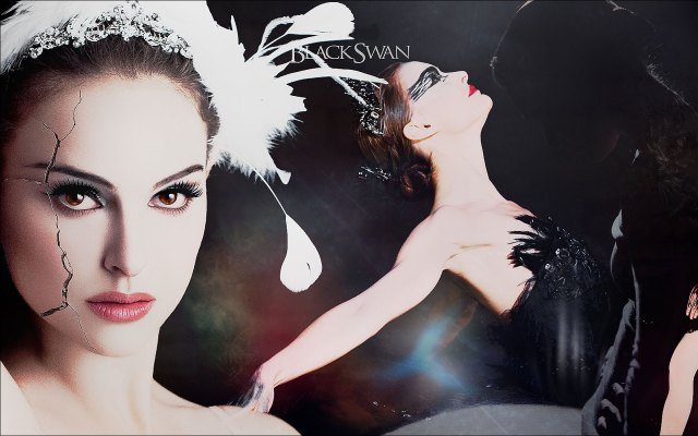 black-swan-wallpaper-hd-6074-hd-wallpapers